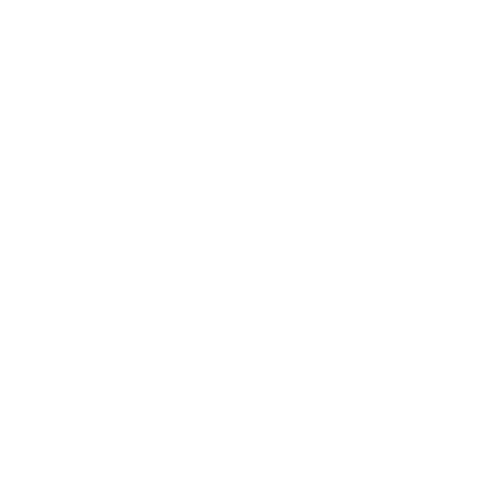 Ranger Capital Group | Investment Manager | Investment Strategies